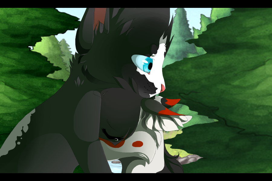 Warrior Cats Blossomkit upon the GorseClan cats