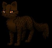 Warrior Cats Blossomkit Braunstern   Warrior C...