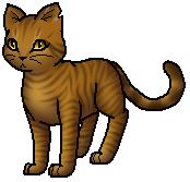 Warrior Cats Dandelionkit