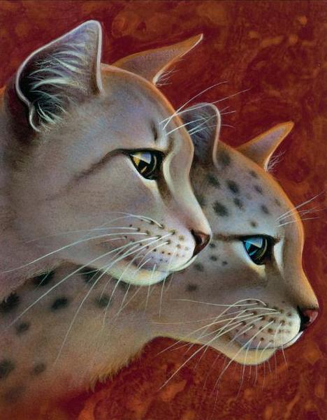 Federbart Warrior Cats Wiki Fandom Powered By Wikia