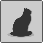 Placeholder cat