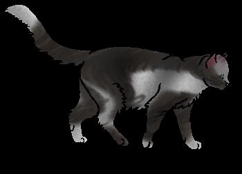 Fernshade Warrior Cats