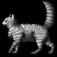 Willowfeather.juvenile