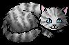 Willowfeather.kitten