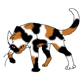Hummel Warrior Cats