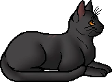 Cinderfur.elder