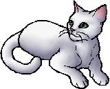 Warrior Cats Sign Of The Moon