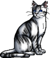 Ivypool.warrior