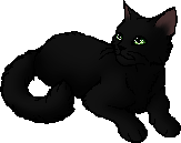 Hollyleaf.star