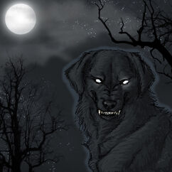 Black Dog ghost