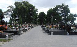 Cmentarz w Zerzniu (Cylichowska).JPG