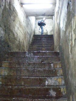 Tunel średnicowy (wyjście ewakuacyjne).JPG
