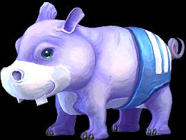 Plump Hippo