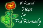 Datei:Roseofhope.png