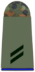 Army Private 2nd Class