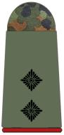 File:1st Lieutenant.png