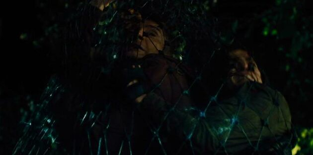Plasma Nets