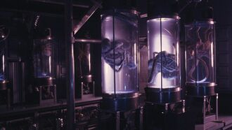 Cryo-stasis tubes2
