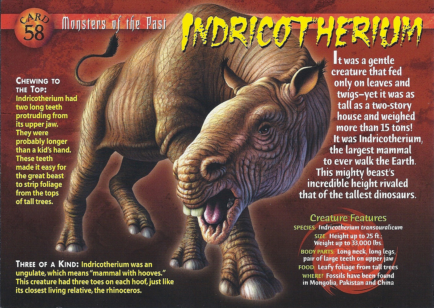 http://vignette3.wikia.nocookie.net/wierdnwildcreatures/images/7/7e/Indricotherium_front.jpg/revision/latest?cb=20130820035943