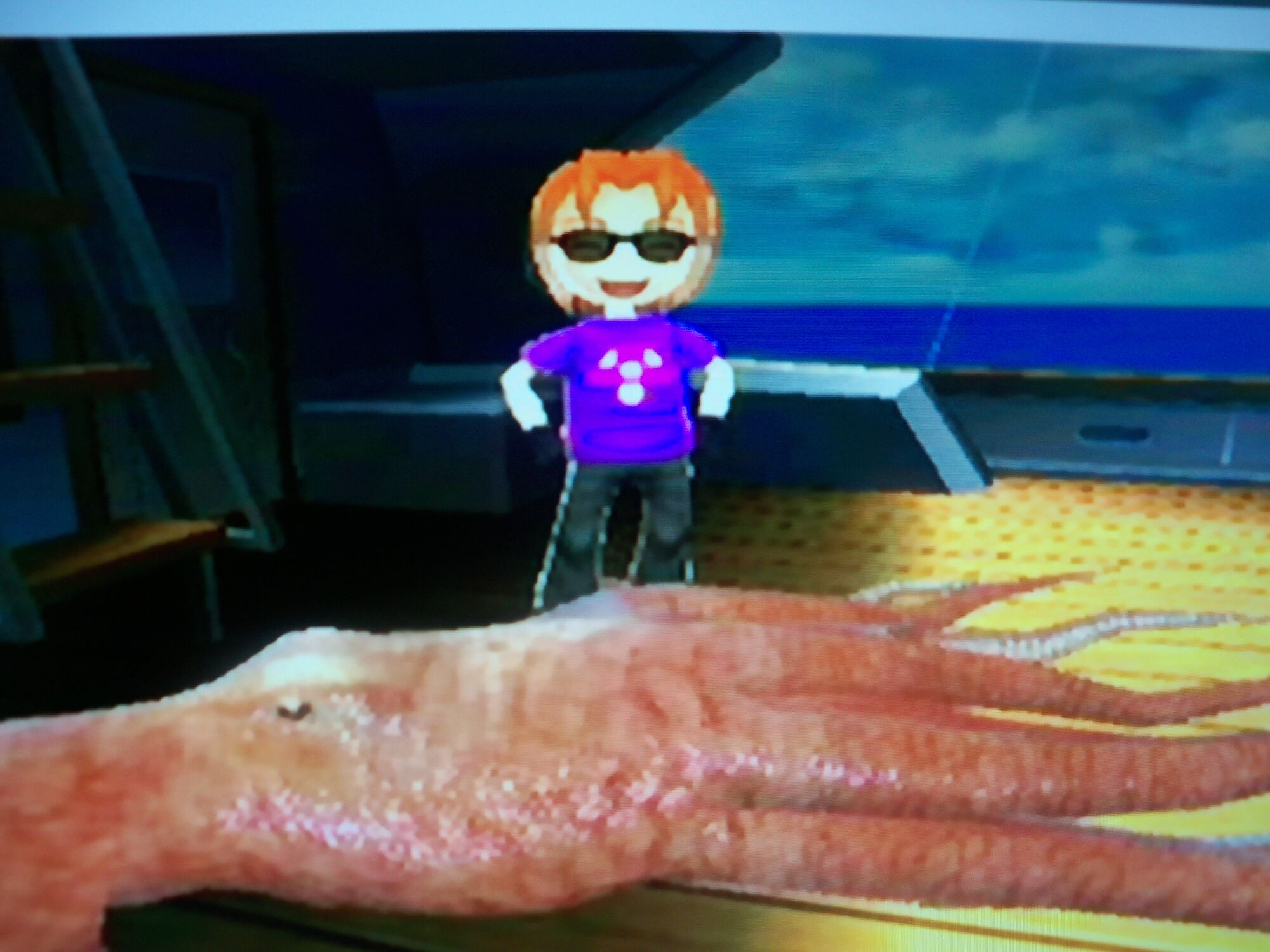 N pacific giant octopus wii fishing resort wiki for Fishing resort wii