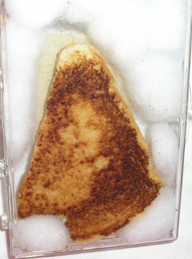 File:Grilledcheesemary.jpg