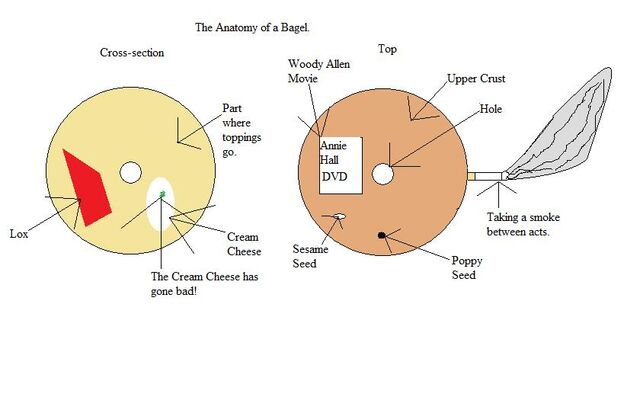 File:Bagel anatomy.jpg