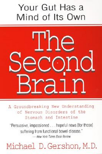Second brain cover