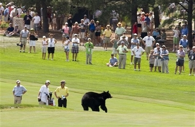 BlackBearUSSeniorOpen08-01-2008