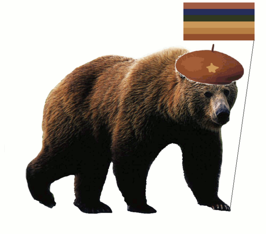 File:Grizzly bear photo.png