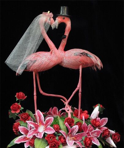 File:Gay Flamingo Wedding.jpg