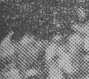 Rigoberto Felandro