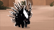 how to cook a wild porcupine