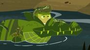 Croc.00354