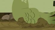 Croc.00141