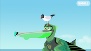 Seagull Pecking Chris