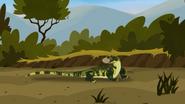 Croc.00119
