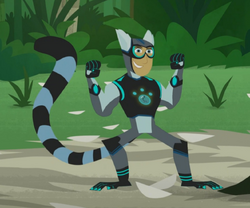 Ring-tailed Lemur Power