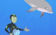 Wild Kratts-dolphin.003