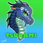 Imageoftsunamiheadhotbysahel