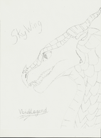 SkyWing by VoidLegend