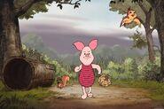 Piglet walking