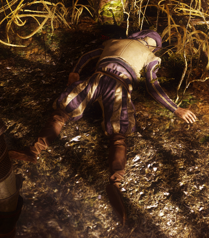 File:Tw3 Corporal Lyffned death corpse 2.png