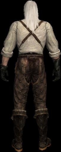 Geralt 1 back