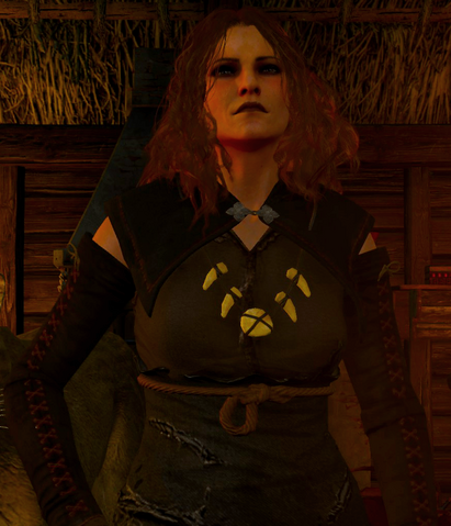 File:Tw3 Witch of Lynx Crag.png