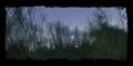 Thumbnail for version as of 21:49, November 19, 2007