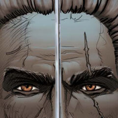 Geralt in the Matters of Conscience comic book.