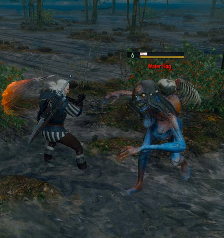 File:Tw3 fighting Water hag.png
