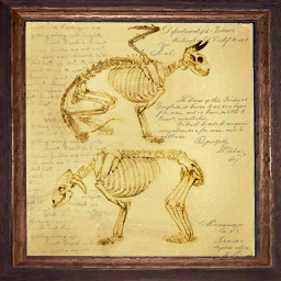 File:Decorative Painting monster anatomy.png