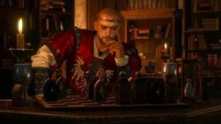 The Witcher 3 - King Radovid Meeting