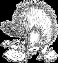 Echinops novels